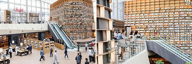 Daya Tarik Terbaru di Seoul, Perpustakaan Starfield di Starfield COEX Mall