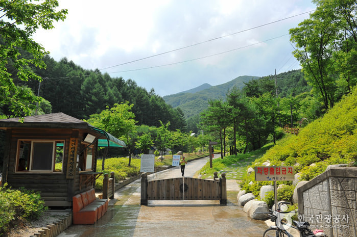 Taman Kota Gunung Myeongjisan