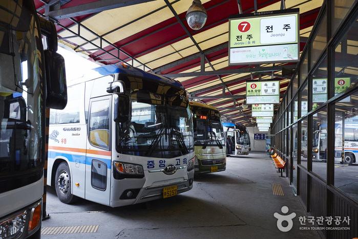 Terminal Bus Dong Seoul