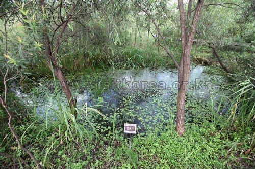 Taman Ekologikal Gildong