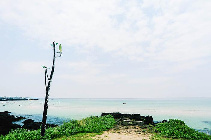 Panduan untuk Menikmati Pesisir Timur Pulau Jeju