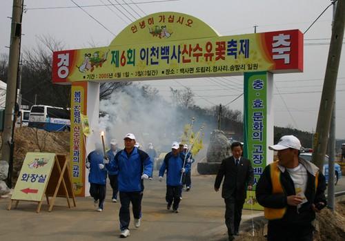 Festival Bunga Sansuyu di Desa Baeksa Incheon