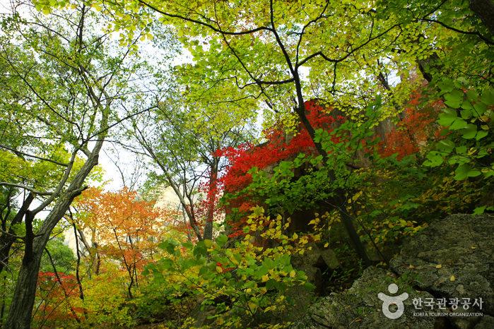 Taman Nasional Seoraksan (Namseorak)