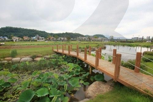 Tamjin River Wetland Eco-Park
