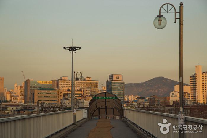 Jembatan Pejalan Kaki Yongdap