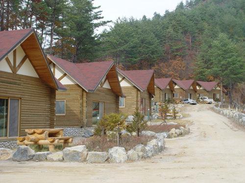 Hutan Rekreasi Highland Natural Taebaek