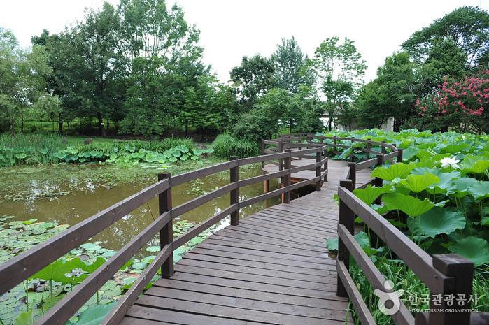 Taman Botani Jeonju