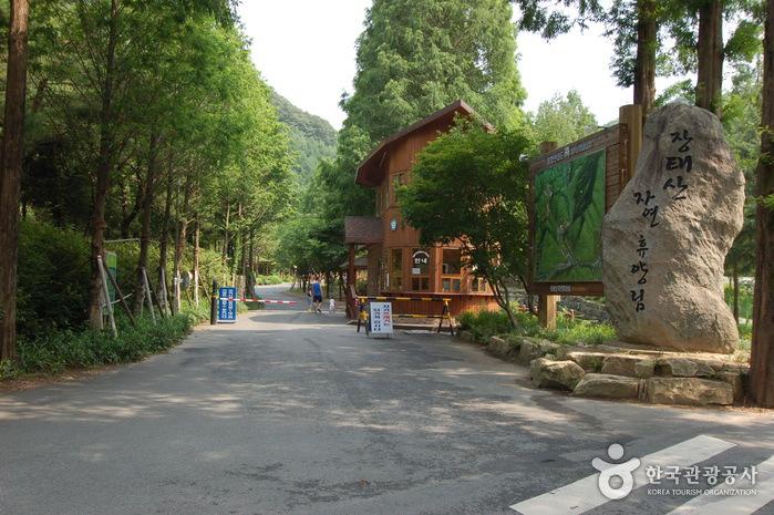 Hutan Rekreasi Jangtaesan