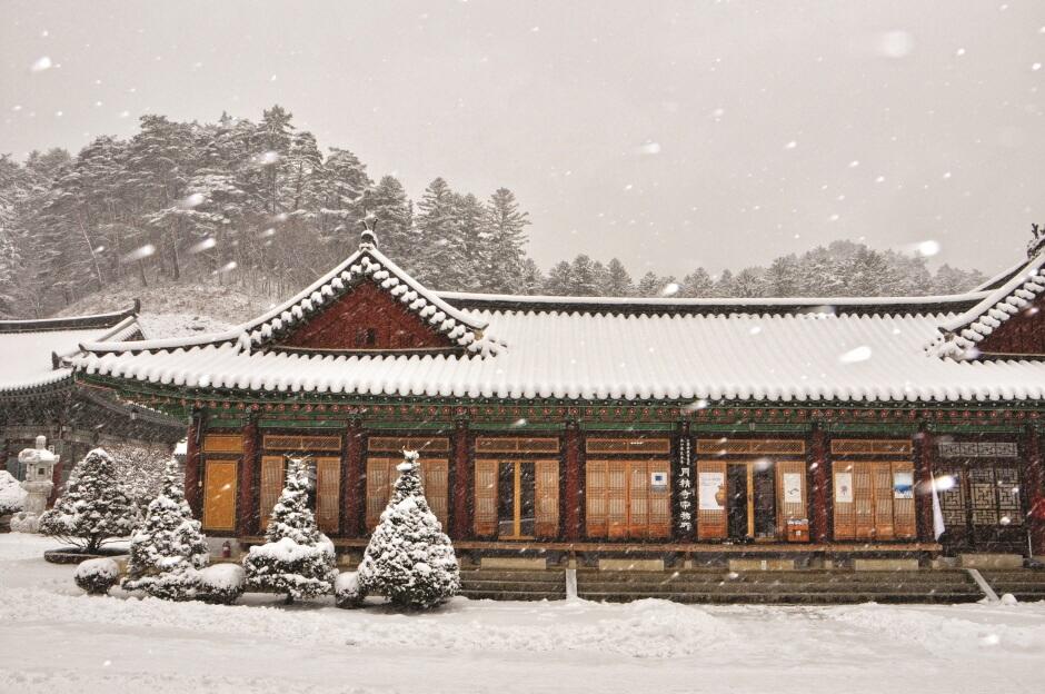 Menginap di Kuil Woljeongsa (월정사 템플 스테이)