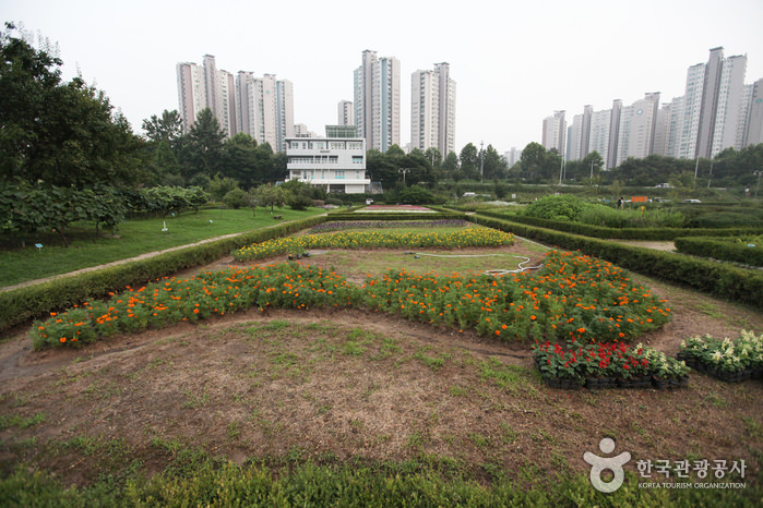 Taman Hangang Jamsil