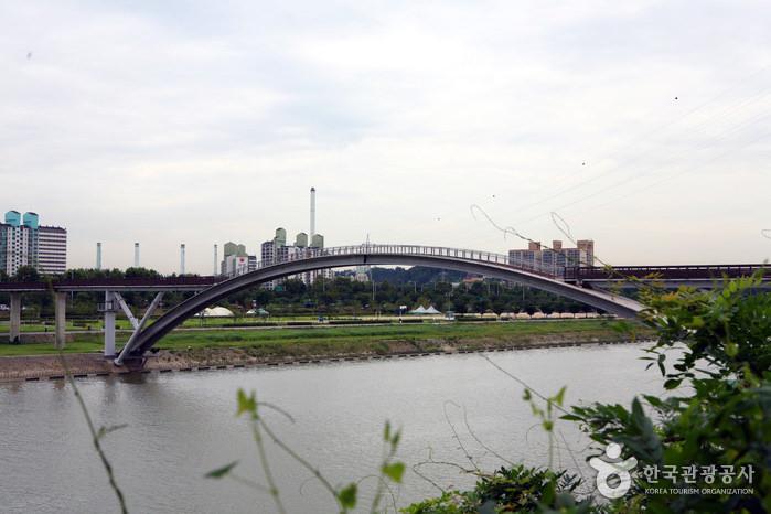 Taman Seonyudo