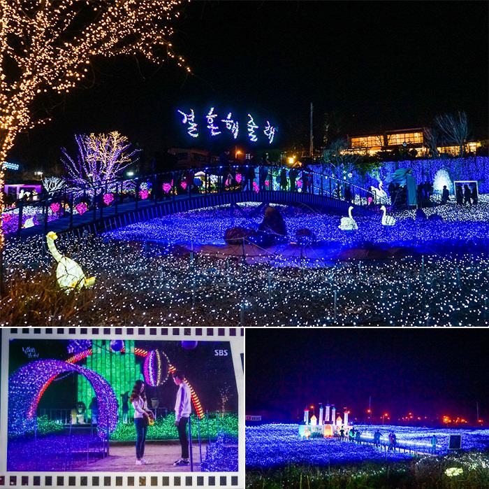 Festival Lampu Dongeng yang Indah di Provence Village