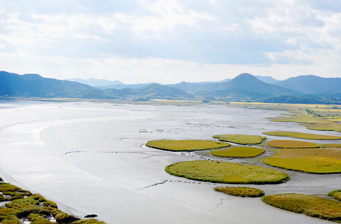 Suncheon Bay dipelihara oleh matahari, langit dan angin