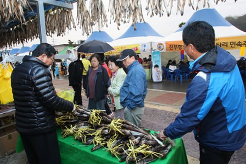 Festival Goseong Myeongtae