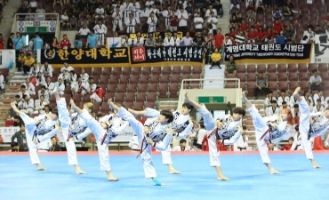World Taekwondo Hanmadang (세계태권도한마당)