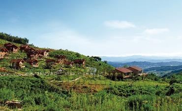 Pusat Penyembuhan Hutan Nasional