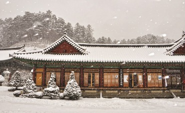 Photo_Menginap di Kuil Woljeongsa (월정사 템플 스테이)