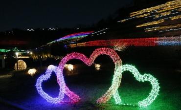 Festival Cahaya Perkebunan Teh Boseong (보성차밭 빛축제)