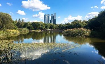 Hutan Seoul (서울숲)
