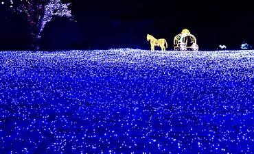 Romantisme Malam dalam Festival Cahaya di Sekitar Seoul