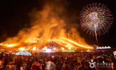 Festival Api Jeju (제주 들불축제)