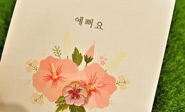 Sistem Penulisan Korea yang Indah, Hangeul