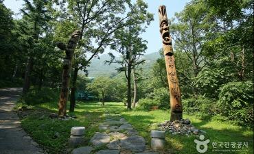 Taman Apsan Daegu (대구앞산공원)