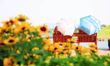 Bergabunglah dalam Eco-Tour Kota Suncheon!