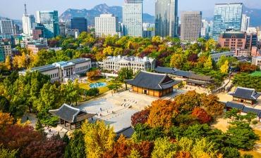 Destinasi untuk Menikmati Musim Gugur di Sekitar Seoul