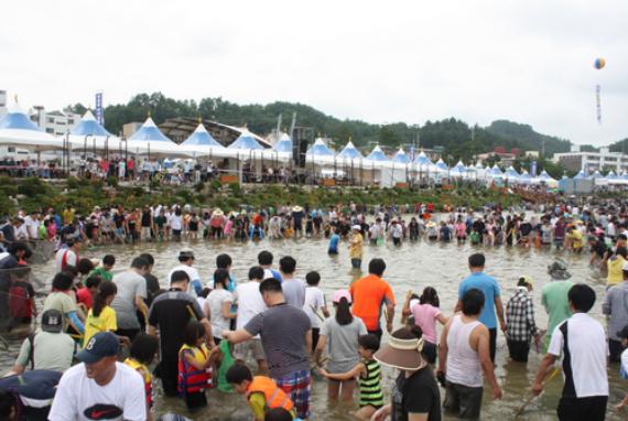 Festival Eun-Uh (Sweet Fish) Bonghwa