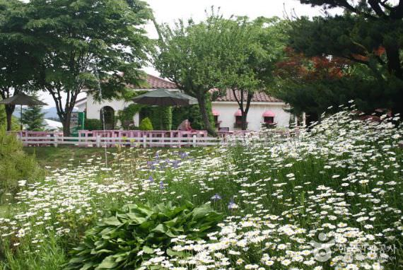 Taman Herbal Ilyeong