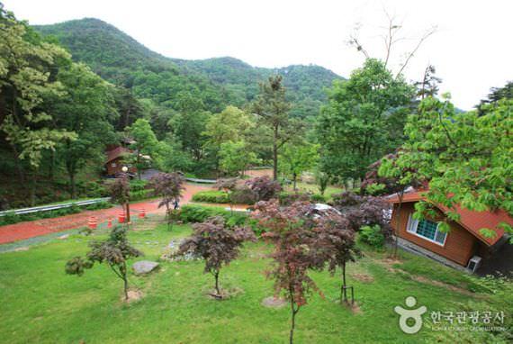 Hutan Rekreasi Alam Songjeong
