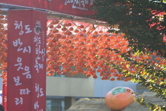 Festival Buah Persimmon Tanpa Biji Cheongdo