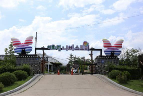 Cerita Kupu-Kupu Di Gapyeong Ewhawon