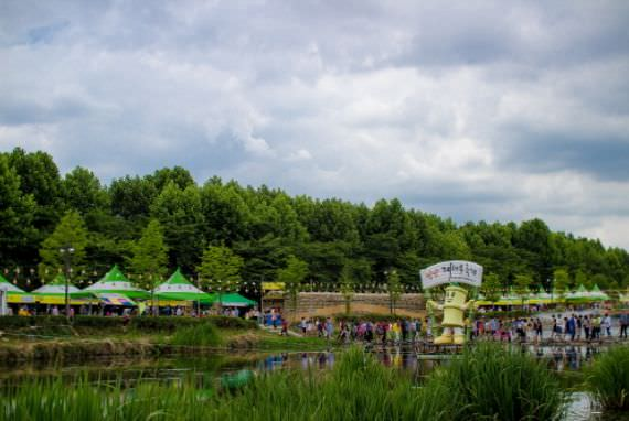 Festival Damyang Bamboo