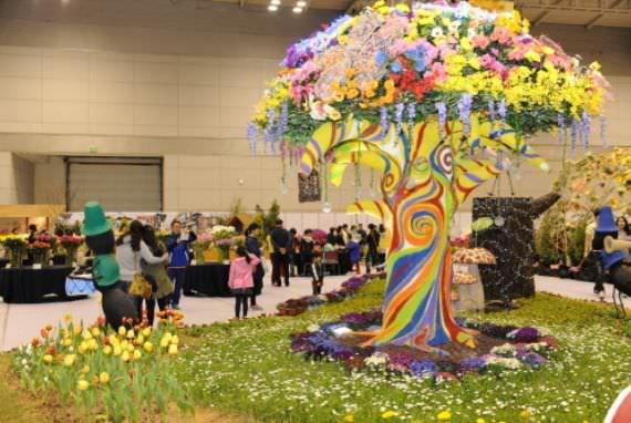 Festival Pertunjukkan Bunga Musim Semi di Gwangju