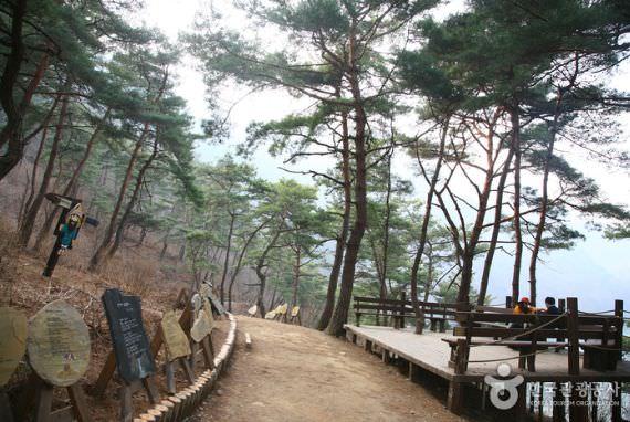 Jalur Mendaki Sanmagiye-gil