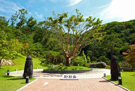 Taman Botani Hwadam
