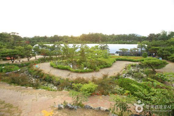 Arboretum dan Kebun Theme Botanic