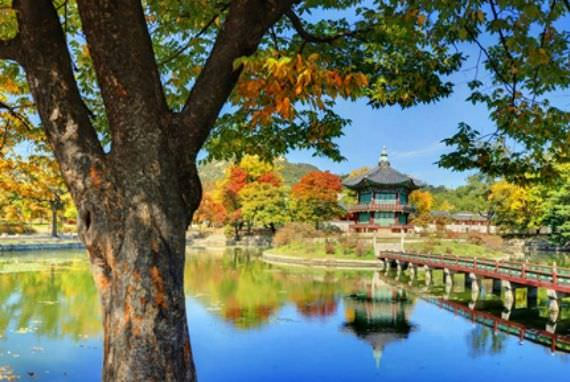 Ikuti Jejak Musim Gugur ke Istana Kuno