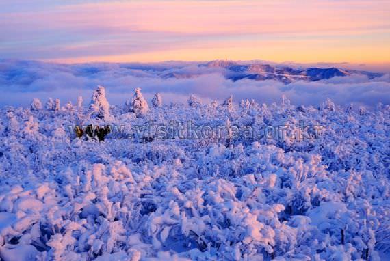 Taebaeksan Mountain