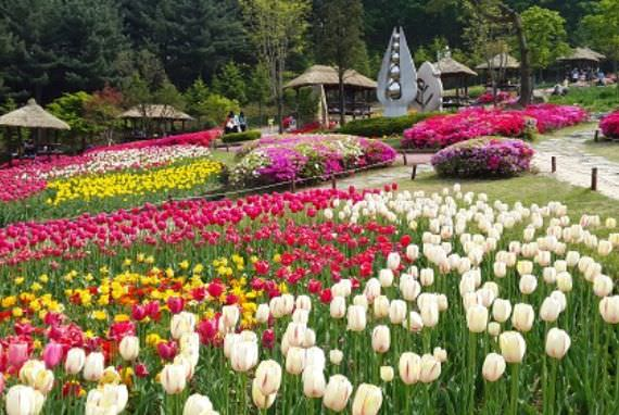 Taman Pertanian Yongin
