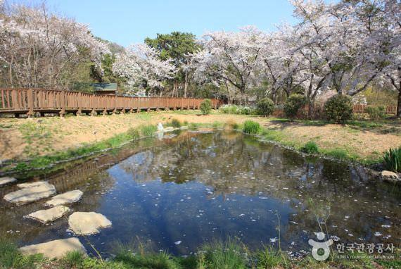 Lingkungan Eco-Park Jinhae NFRDI