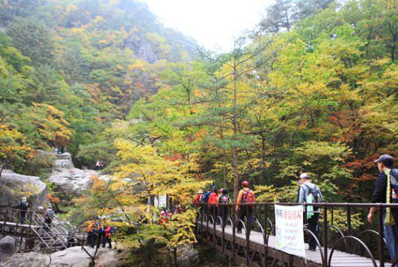 Gunung Odae di pyeongchang, Gangwon-do