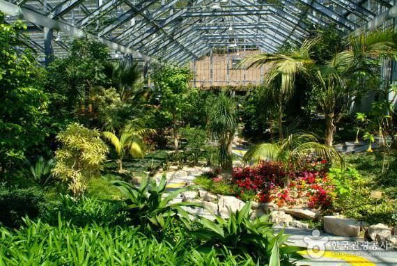 Taman Arboretrum Wando