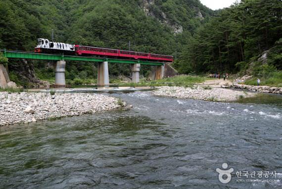 Kereta Pegunungan Hijau Baekdudaegan (V-Train)