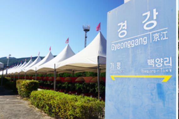 Gyeonggang Station Rail Bike (Gangchon Rail Park)
