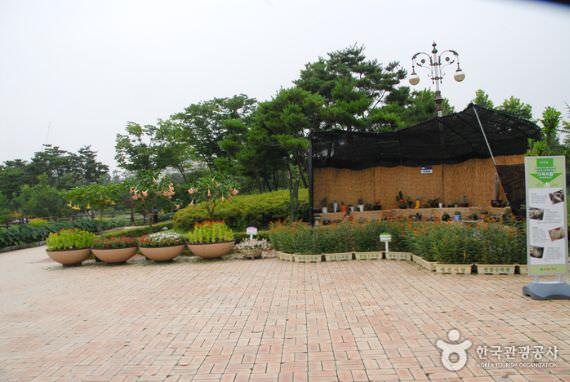 Arboretum Hanbat di Daejon