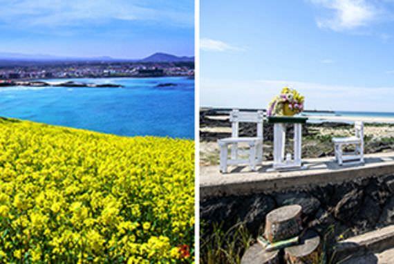 10 Cara Terbaik Menikmati Pulau Jeju di Bulan Maret!