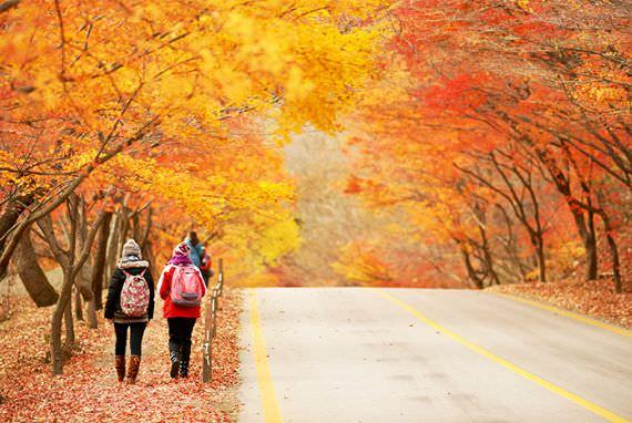 Pengunungan Korea Jadi Destinasi Wisata Saat Musim Gugur